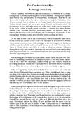 A strange summary of J.D. Salinger's novel THE CATCHER IN THE RYE