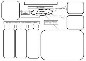 A2 Biology Plant Coordination Mind Map