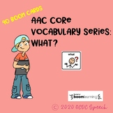AAC Core Vocabulary Series: What?