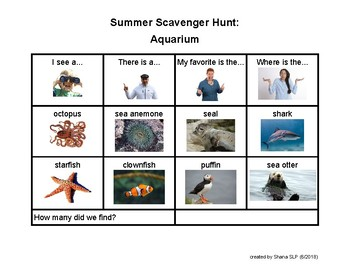 AAC Visual Summer Scavenger Hunt vocabulary packet