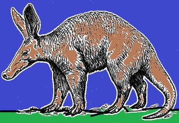 AARDVARKS CLIP ART AND READING PACK
