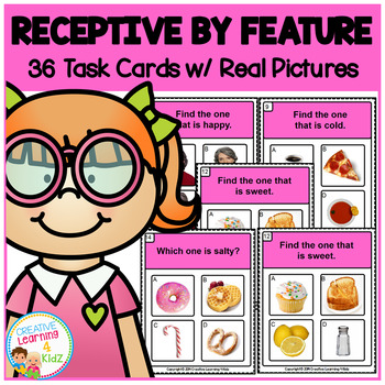 Receptive by Feature Task Cards ABA Special Education