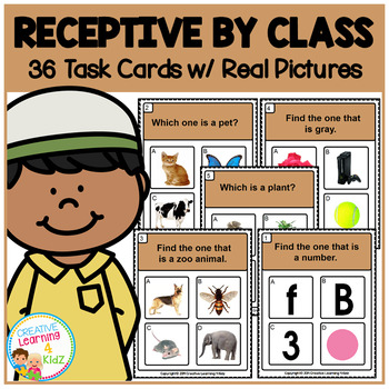 Receptive by Class Task Cards ABA Special Education