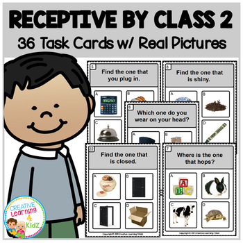 Receptive by Class 2 Task Cards ABA Special Education