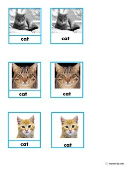 ABA/VBA Matching Identical and Non-Identical Items/Flashcards for Autism