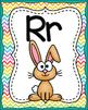 ABC Alphabet Posters Animal Theme!  (Rainbow Chevron Background)