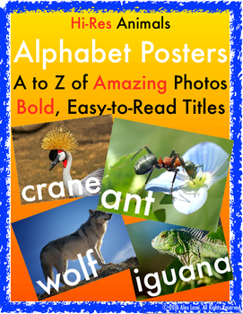 ABC Animal Photo Posters, Hi-Res Alphabet Pictures