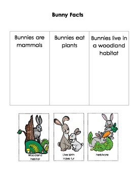 ABC Bunny Curriculum Pack