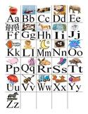 ABC/Consonant & Vowel Sounds  Practice; Printables; Litera