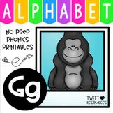 Alphabet Letter Of The Week Program - Alphabet Letter G Package