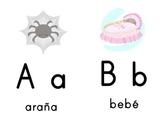 ABC Flashcards Spanish