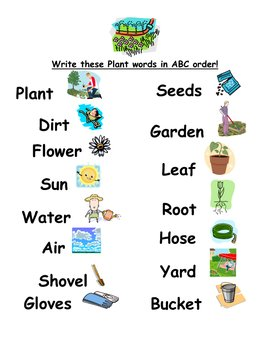 ABC Order Plant Words