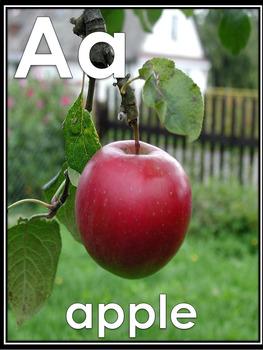 ABC Photo Cards