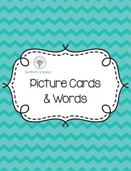 ABC Picture Cards and Words in Spanish