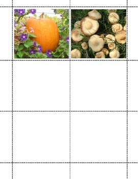 ABC Picture Matching Game