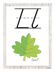 ABC Posters (D'Nealian) - White Wood