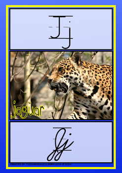 Alphabet Animal Posters (Zaner Bloser Style)