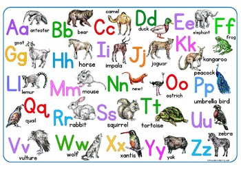 ABC alphabet double sided place mat