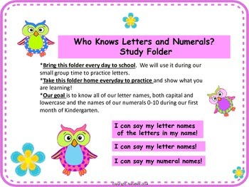 ABCs and 123s Recognition Fluency Practice  (Owls)