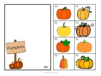 ABLLS-R  ALIGNED ACTIVITIES B8 Sorting non-identical pictures (Fall Theme)