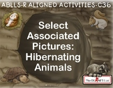 ABLLS-R ALIGNED ACTIVITIES C36 Select associated pictures: Hibernating animals
