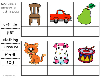 ABLLS-R ALIGNED ACTIVITIES G25 Label the category of items