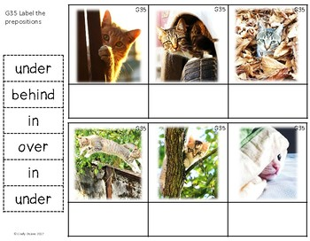 ABLLS-R ALIGNED ACTIVITIES G35 Label prepositions Photo Version
