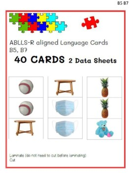 Match Identical Pictures Module Cards ABLLS-R B5