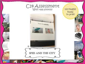 ABLLS-R C14 Assessment