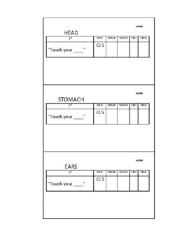 ABLLS-R C15 Body Parts Teacher Instruction(SD) Language Cards