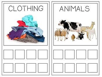 Matching Game for CATEGORY or CLASS