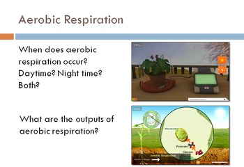 AC SCIENCE - Photosynthesis and Respiration