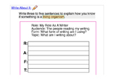 ACCESS 1.4 Paragraph Writing Prompt ELL ESL  RAFT Prewriting Living  Nonliving