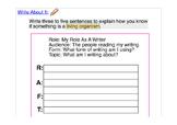 ACCESS 1.4 Paragraph Writing Prompt ELL ESL  RAFT Prewriti