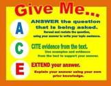 ACE BCR Questions Poster
