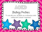 ACED Strategy Posters