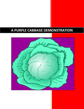 PURPLE CABBAGE LAB for CHEMISTRY-PHYSICS-BIOLOGY-ENVIRONMENTAL SCIENCE