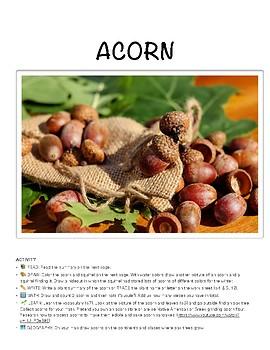 ACORN & OAK TREE - Mini Unit Study