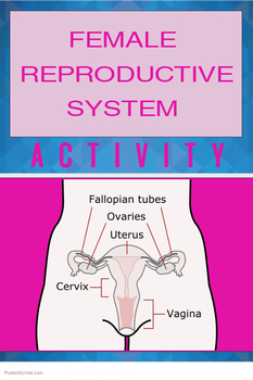 ACTIVITY - Female Reproductive System in Humans
