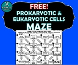 ACTIVITY MAZE - BIOLOGY - Eukaryotic & Prokaryotic Cells