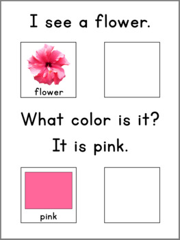COLORS - Adapted Book