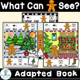 ADAPTED BOOK-Holiday Gingerbread Man