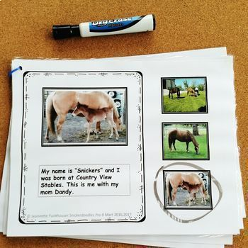 ADAPTED BOOK: COUNTING & MATCHING PICTURES NO PREP