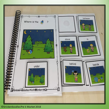 ADAPTED BOOK PREPOSITIONS FIRE FLY THEME