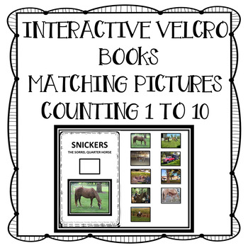 ADAPTED BOOK: SNICKERS THE QUARTER HORSE
