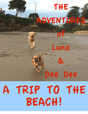 THE ADVENTURES OF LUNA & DEE DEE (DESCRIBE A TRIP TO THE BEACH!)
