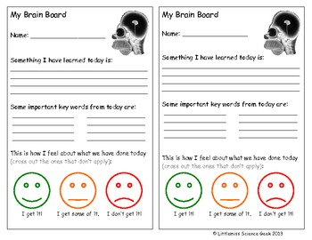 AFL Plenary - Brain board