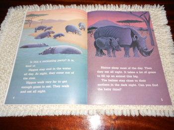 AFRICA: ANIMALS AT NIGHT 2nd Grade Leveled Reading Book - Macmillan McGraw Hill