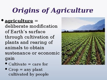 AGRICULTURE PowerPoint!