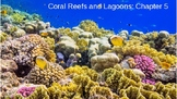 AICE Marine Science: Coral Reef Ecology (Chapter 5)
